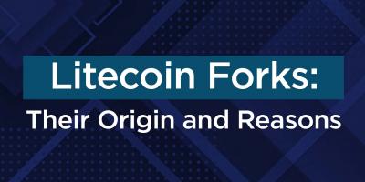 Litecoin Forks: Their Origins And Reasons For Splitting Away