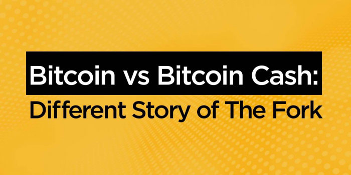 Bitcoin vs Bitcoin Cash: Different Story of The Fork