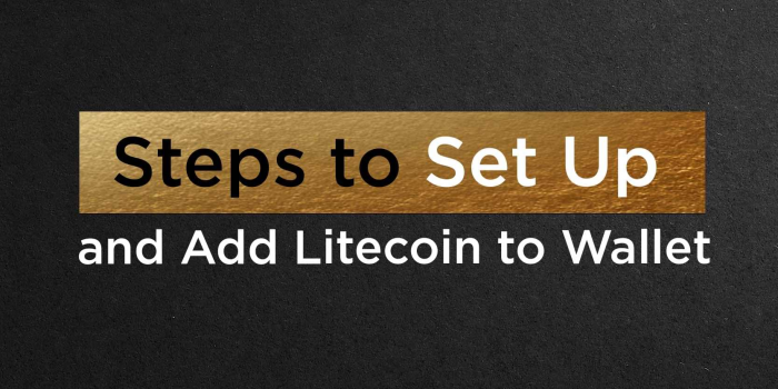 Steps to Set Up and Add Litecoin to Wallet   The Top Coins