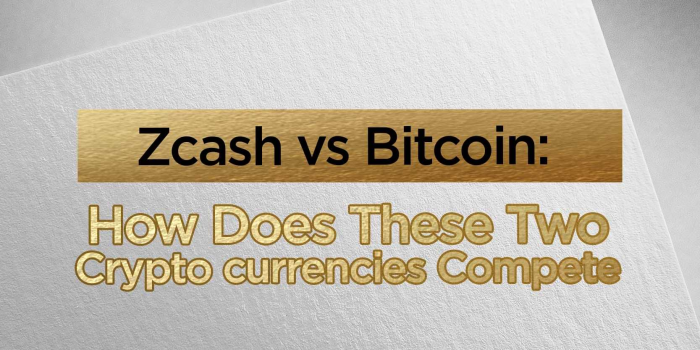 Zcash vs Bitcoin: How Does These Two Cryptocurrencies Compete