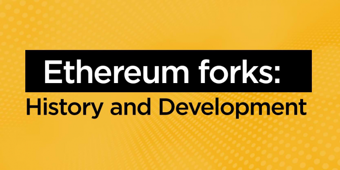 Ethereum forks: History and Development