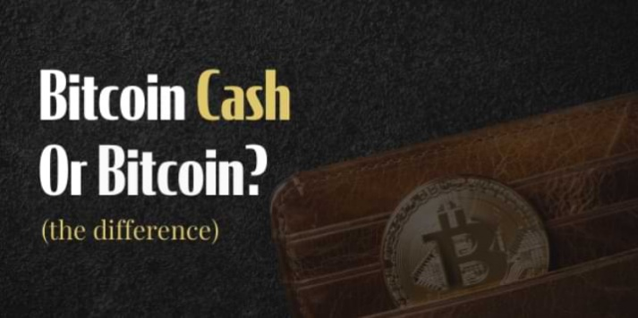 Difference between Bitcoin Cash and Bitcoin (Explained)