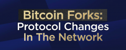 Bitcoin Forks: Protocol Changes In The Network