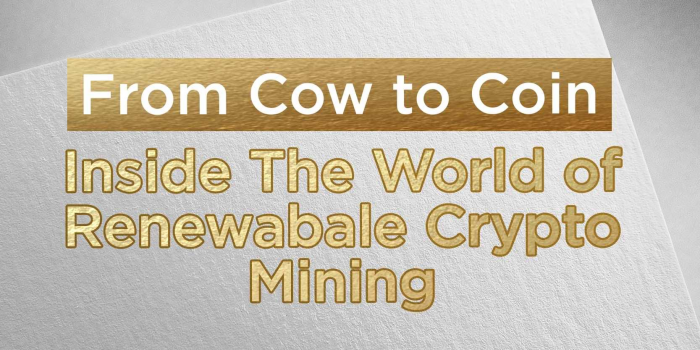 From Cow to Coin: Inside The World of Renewable Crypto Mining