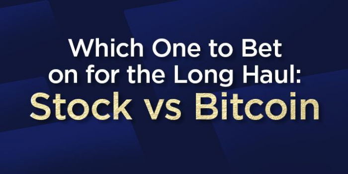 Which One to Bet On for the Long Haul: Stock vs Bitcoin