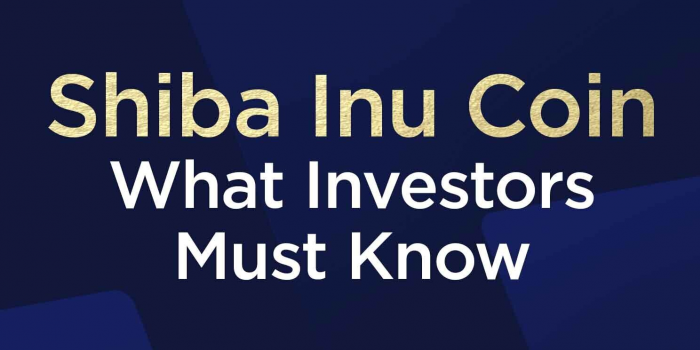 Shiba Inu Coin What Investors Must Know
